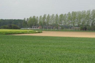 Overheid moet verantwoordelijkheid nemen om Vlaamse landbouw  leefbaar te houden