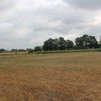 Brede weersverzekering voor landbouwers bij schade aan gewassen bij natuurramp