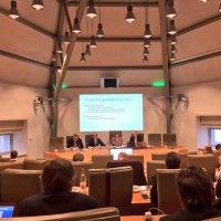 Meerderheidspartijen N-VA, CD&V en Open VLD bereiken akkoord ritueel slachten na bespreking rapport-Vanthemsche
