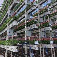 123.000 euro subsidie voor proefcentrum Hoogstraten