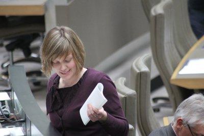 Tinne actief als Vlaams parlementslid
